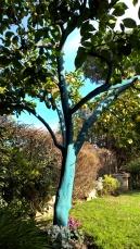 L'albero azzurro.